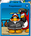Penguinnate2
