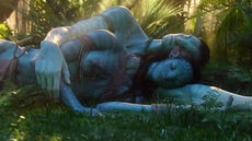 Jake and Neytiri sleep after mated