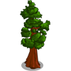 CA Redwood-icon