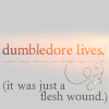 Dumbledorefleshwound.jpg