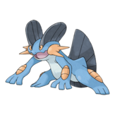 260Swampert