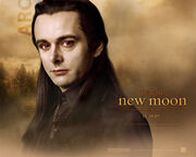 New-moon-wallpaper-aro