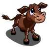 Chocolate Calf-icon