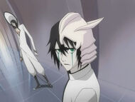 Ulquiorra and Nnoitra