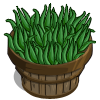 Aloe Vera Bushel-icon