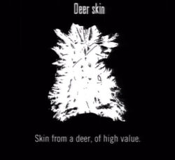 Animals Deer Skin