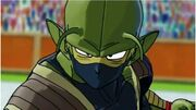 Unnamed Namekian hero