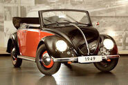 Beetle 6
