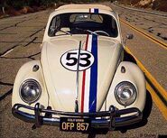 Herbie