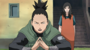 Shikamaru Protects Kurenai