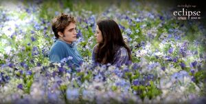 Eclipse-Movie-Stills-eclipse-movie-13228227-901-456