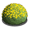 Yellow Dome-icon