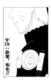 Chapter 316