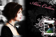 Alice Cullen Wallpaaper by KristenElise