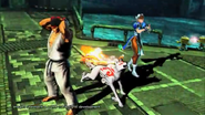 Amaterasu, Ryu, Chun Li, Serverbots and Issun-MvC3