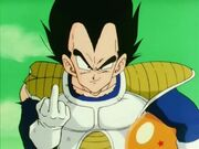 Vegeta0875678