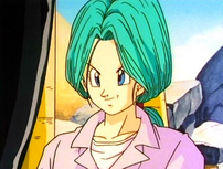 Bulma3