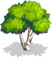 Green Birch-icon.png