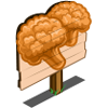 Orange Cauliflower Mastery Sign-icon