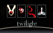 Twilight Saga Books Wallpaper by miratio