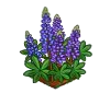 Perfect Lupine-icon