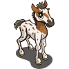 Palouse Foal-icon