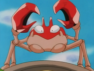 Ash Krabby