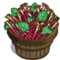 Rhubarb Bushel-icon