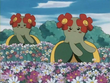 EP182 Bellossom