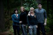 Jasper,alice,rosalie,emmett eclipse