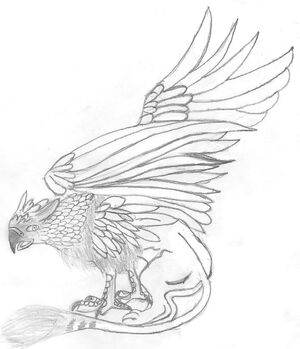 buckbeak coloring pages - photo#15
