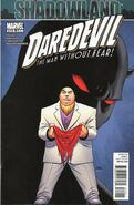 Daredevil Vol 1 510
