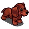 Dachshund Puppy Red-icon