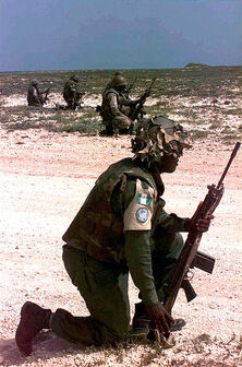 Nigerian troops in Somalia