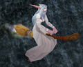 Flying Broom.png