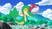 EP667 Ash atrapando a Snivy
