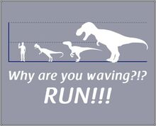 Why-are-you-waving-run