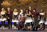 Glee-2-ep-9-special-education-sectionals