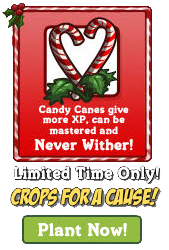 Candy Cane-Crops for a Cause