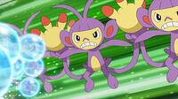 EP592 Ambipom usando doble equipo