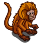 Gold Lion Tamarin-icon