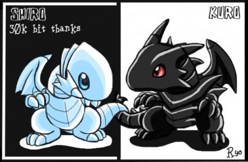 http://images4.wikia.nocookie.net/__cb20101222132657/pokeespectaculos/es/images/2/28/White_y_Black_dragones.jpg