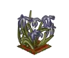 Wither Bunch Iris-icon