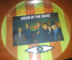 Duran duran union of the snake picture disc