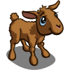 Brown Lamb-icon