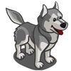 Husky Gray-icon