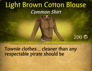 Light Brown Cotton Blouse