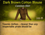 Dark Brown Cotton Blouse