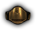 Mw tournament Belt middle