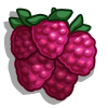 Straspberry-icon